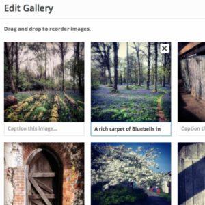 Editing an image gallery in WordPress