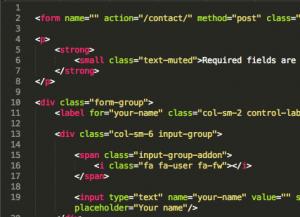HTML web form code